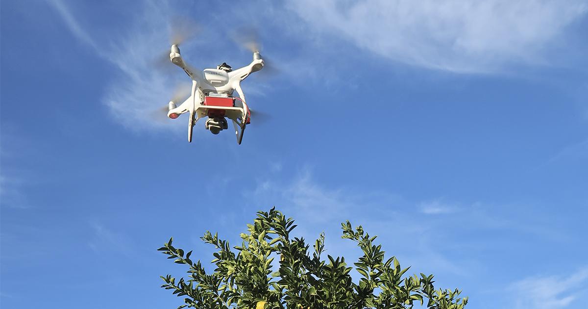Multispectral camera on drone